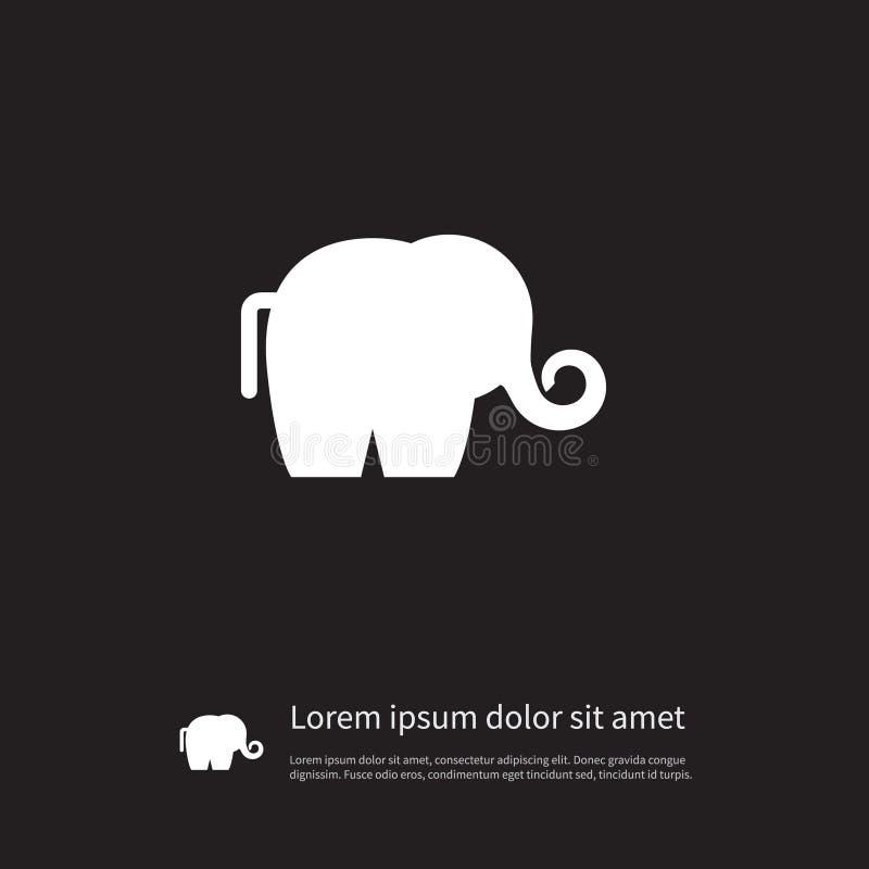 Εικονίδιο ελεφαντόδοντου Το διακλαδωμένο ζωικό διανυσματικό στοιχείο μπορεί να χρησιμοποιηθεί για το ελεφαντόδοντο, ελέφαντας, δι διανυσματική απεικόνιση