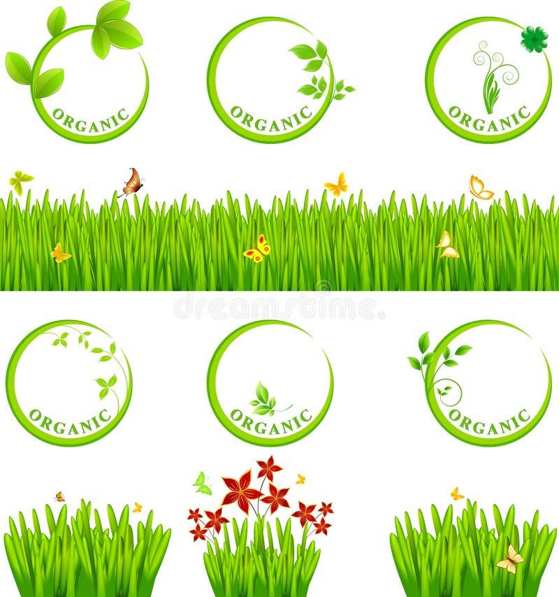Εικονίδιο και χλόη Eco ελεύθερη απεικόνιση δικαιώματος