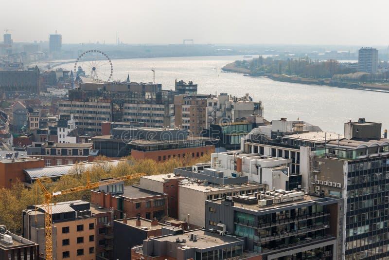 Εικονική παράσταση πόλης του Βελγίου Antwerpen άνωθεν στοκ εικόνες