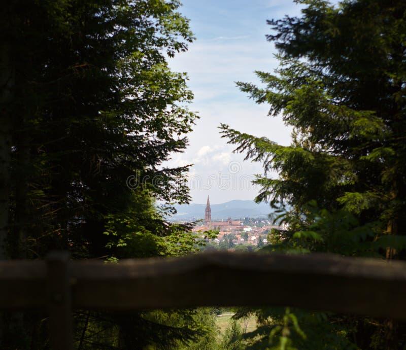 Εικονική παράσταση πόλης Freiburg με Munster που πλαισιώνεται με τα δέντρα και τον πάγκο στο πρώτο πλάνο στοκ φωτογραφία