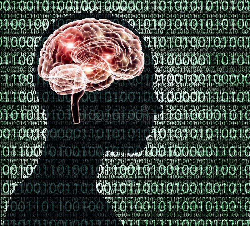 Εικόνα ακτίνας X του ανθρώπινου κεφαλιού με το binairy κώδικα και έναν εγκέφαλο απεικόνιση αποθεμάτων