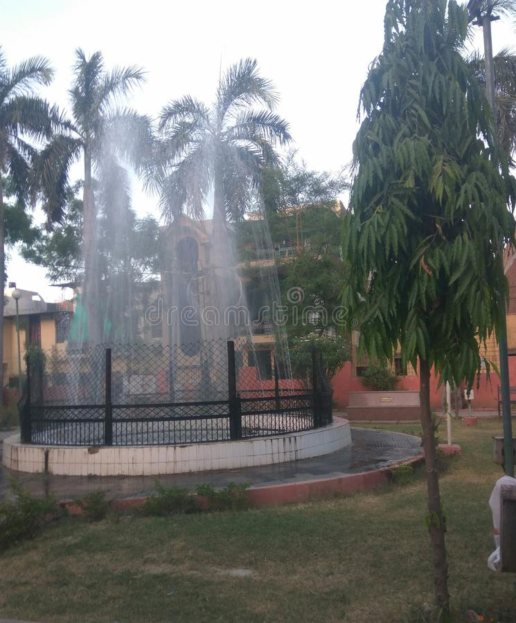 Εικόνα και δέντρο ροής του νερού κήπων στοκ εικόνες
