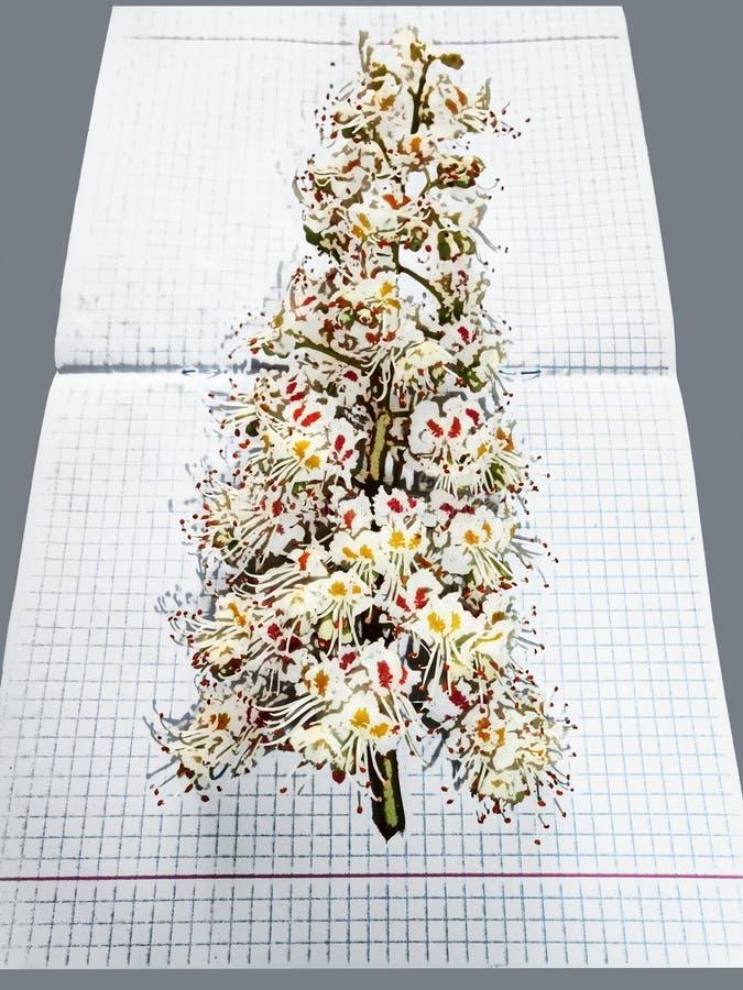 Εικόνα με τα λουλούδια και γκρίζος που τακτοποιείται στοκ φωτογραφία με δικαίωμα ελεύθερης χρήσης