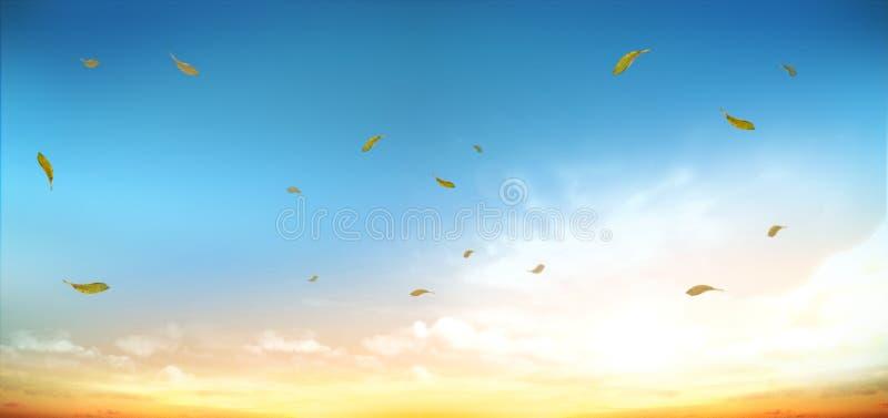 Εικόνα ουρανού φύσης φθινοπώρου στοκ φωτογραφία