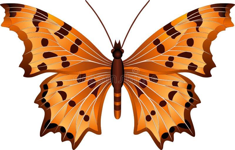Εικόνα πεταλούδων Polygonia διανυσματική απεικόνιση