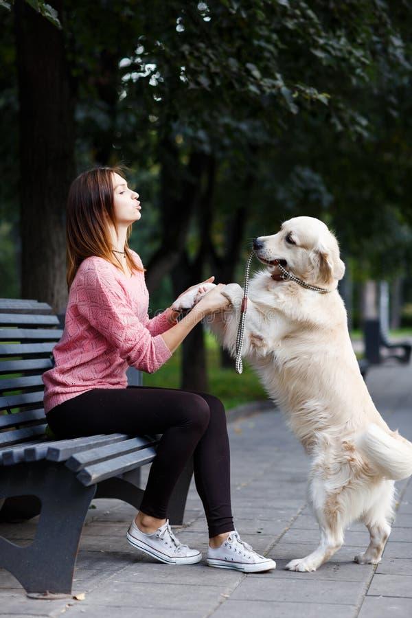 Εικόνα της συνεδρίασης γυναικών στον πάγκο, σκυλί που δίνει το πόδι στοκ φωτογραφίες με δικαίωμα ελεύθερης χρήσης