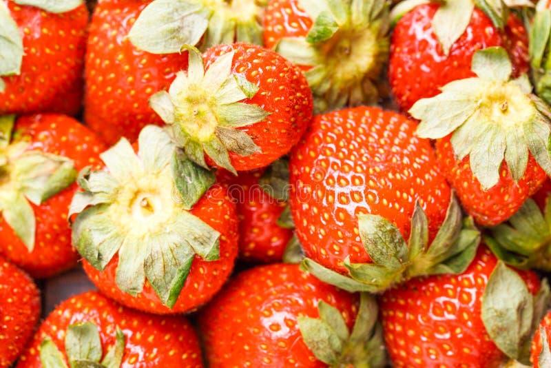 Εικόνα της φρέσκιας ώριμης φράουλας στοκ εικόνα με δικαίωμα ελεύθερης χρήσης