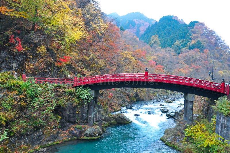 Εικόνα τοπίων της γέφυρας Shinkyo με τα ζωηρόχρωμα φύλλα στοκ εικόνα