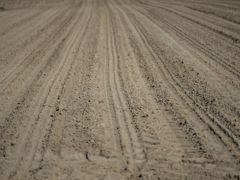 Εικόνα του γεωργικού τομέα που είναι χαλασμένος οφειλόμενος ώσπου να ξεραθεί και κλιματική αλλαγή στοκ εικόνες