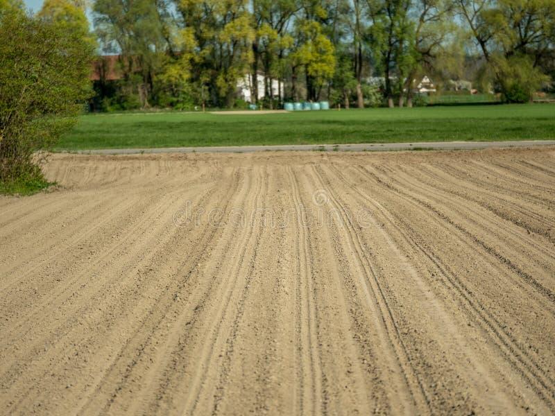 Εικόνα του γεωργικού τομέα που είναι χαλασμένος οφειλόμενος ώσπου να ξεραθεί και κλιματική αλλαγή στοκ φωτογραφία με δικαίωμα ελεύθερης χρήσης