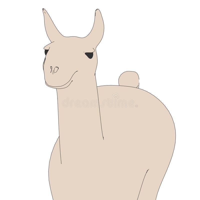 Εικόνα του ζώου λάμα ελεύθερη απεικόνιση δικαιώματος