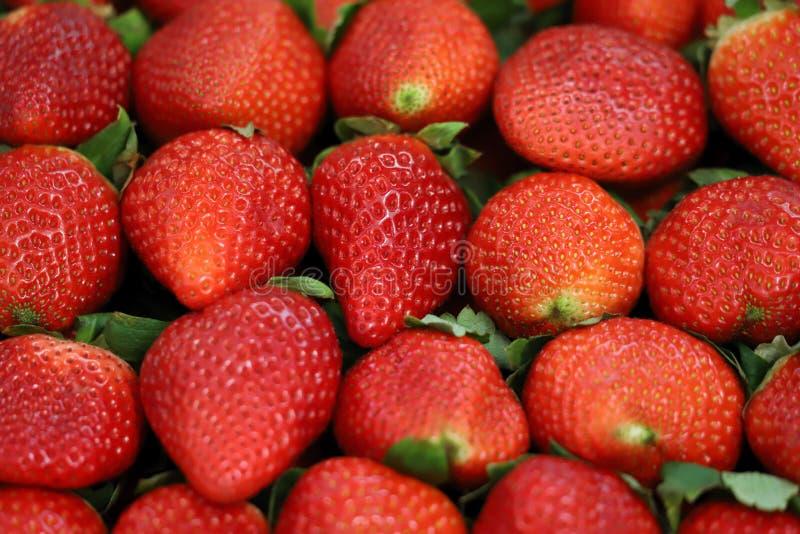Εικόνα των ώριμων juicy κόκκινων φραουλών στοκ φωτογραφία με δικαίωμα ελεύθερης χρήσης