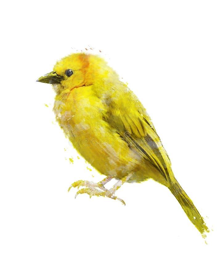 Εικόνα Watercolor του κίτρινου πουλιού ελεύθερη απεικόνιση δικαιώματος