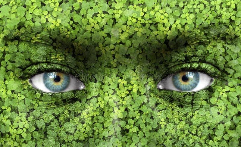 εικόνες οικολογίας έννοιας πολύ περισσότεροι το χαρτοφυλάκιό μου στοκ φωτογραφία με δικαίωμα ελεύθερης χρήσης