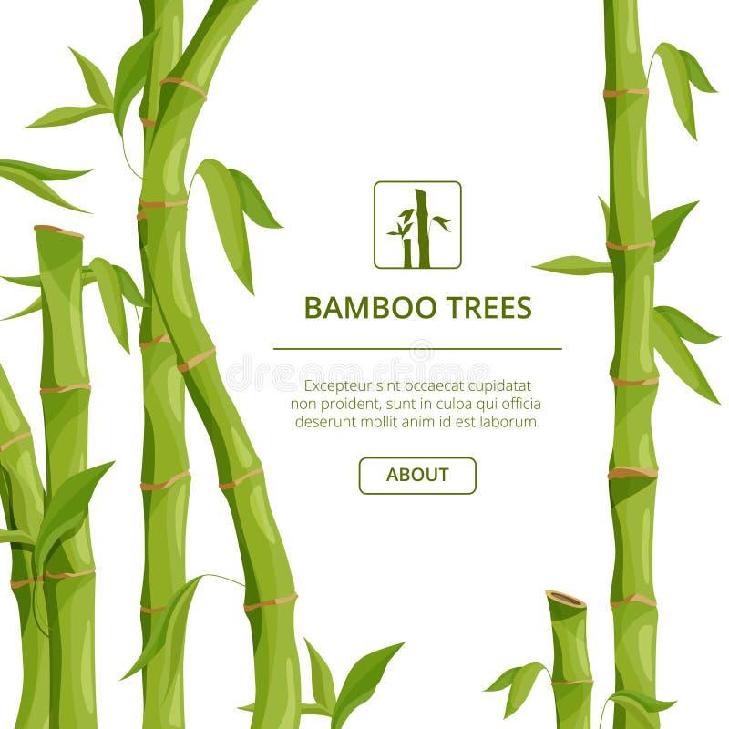 Εικόνες υποβάθρου Eco με τις διακοσμητικές απεικονίσεις του μπαμπού και της θέσης για το κείμενό σας ελεύθερη απεικόνιση δικαιώματος