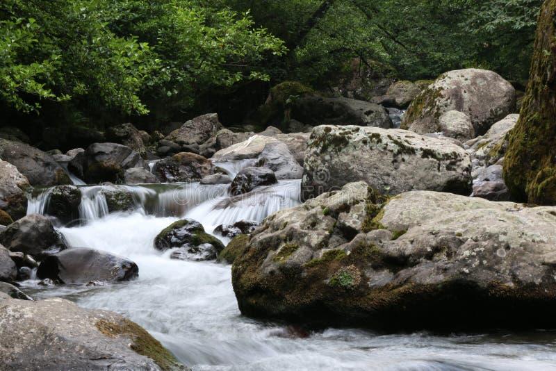 Ειρήνη στη φύση στοκ φωτογραφία με δικαίωμα ελεύθερης χρήσης