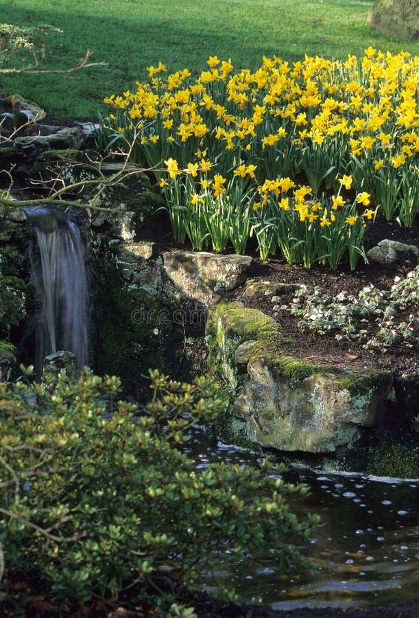 ειρηνική άνοιξη βράχου κήπων στοκ φωτογραφία με δικαίωμα ελεύθερης χρήσης