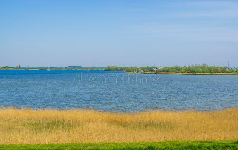Ειρηνική άποψη νερού στα diepsluis bergse, Tholen, Oesterdam, οι Κάτω Χώρες στοκ φωτογραφίες με δικαίωμα ελεύθερης χρήσης