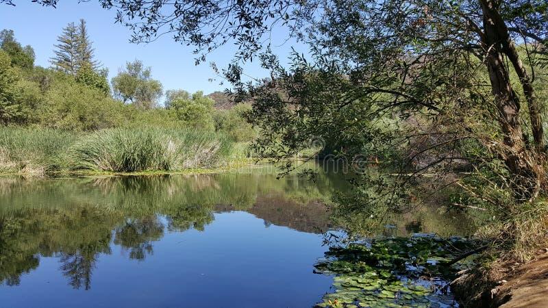 ειρηνική λίμνη στοκ εικόνες