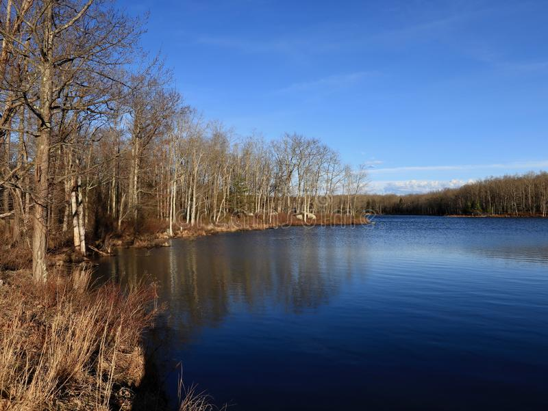 Ειρηνική γαλήνια λίμνη την άνοιξη στοκ εικόνες