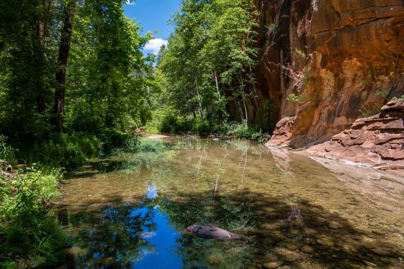Ειρηνική σκηνή ενός σαφούς, ακόμα ρεύμα που απεικονίζει ένα πολύβλαστο πράσινο δάσος σε ένα κόκκινο φαράγγι βράχου στοκ εικόνες