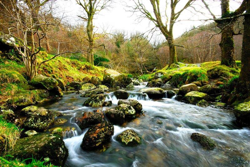 ειρηνικός ποταμός στοκ εικόνα με δικαίωμα ελεύθερης χρήσης