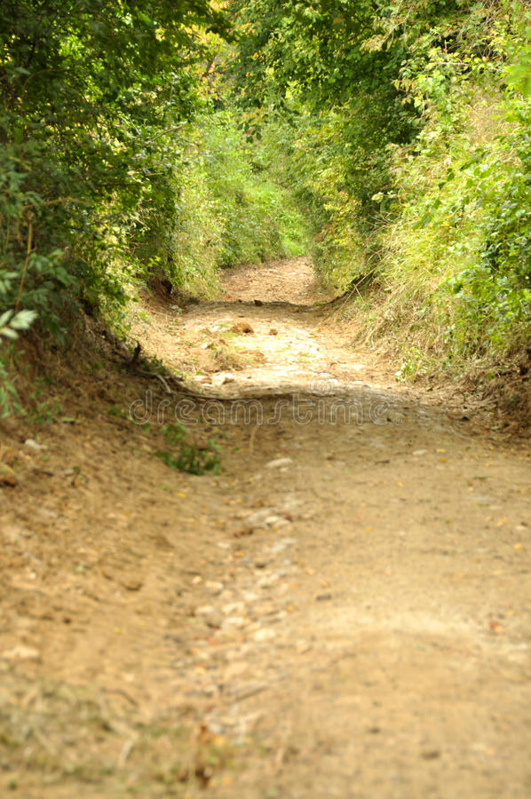 Ειρηνικός δρόμος επαρχίας στη φυσική επιφύλαξη Cheile Nerei στοκ εικόνες
