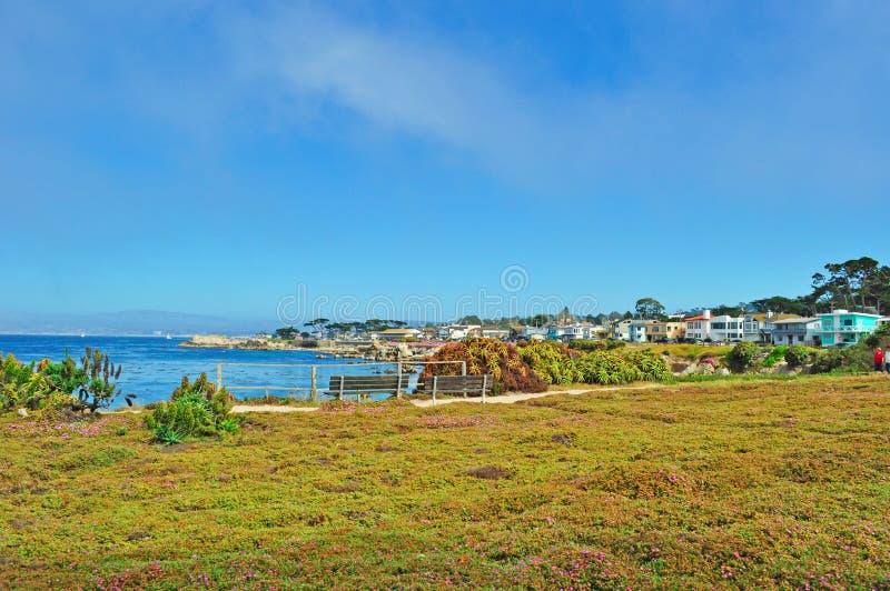 Ειρηνικό άλσος, Καλιφόρνια, Ηνωμένες Πολιτείες της Αμερικής, ΗΠΑ στοκ εικόνα με δικαίωμα ελεύθερης χρήσης