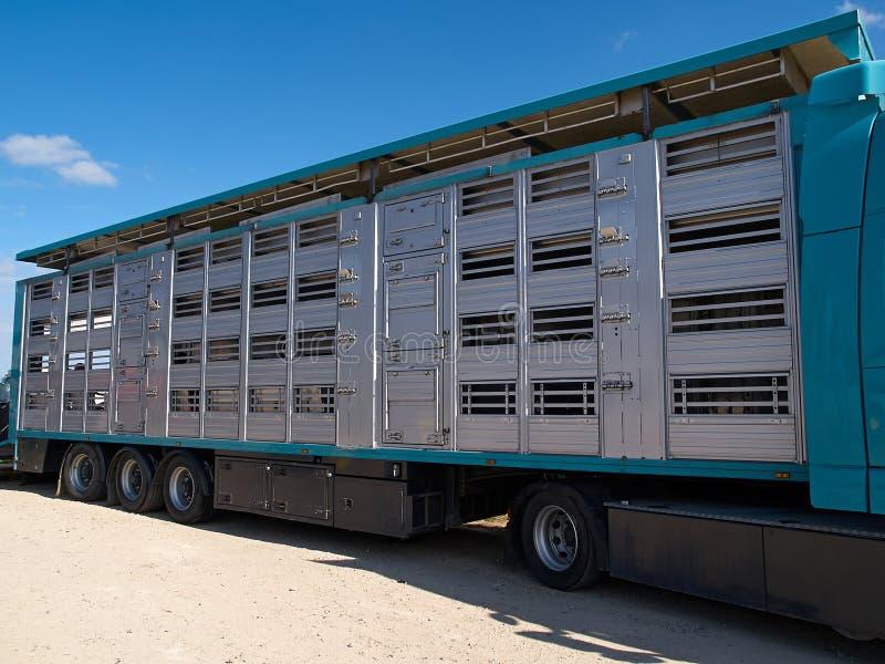 Ειδικά φορτηγό και ρυμουλκό για τη μεταφορά των χοίρων στοκ εικόνα με δικαίωμα ελεύθερης χρήσης