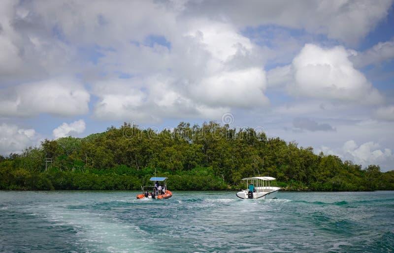 Ειδυλλιακή τροπική θάλασσα και τυρκουάζ νερό στοκ φωτογραφία με δικαίωμα ελεύθερης χρήσης