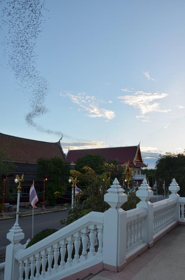 Εκατό εκατομμύριο ρόπαλα σε Wat Khao Chong Pran, Ratchaburi Ταϊλάνδη στοκ φωτογραφία με δικαίωμα ελεύθερης χρήσης