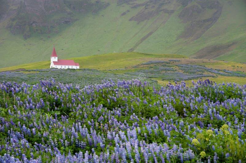 εκκλησία Ισλανδία vik στοκ εικόνες με δικαίωμα ελεύθερης χρήσης
