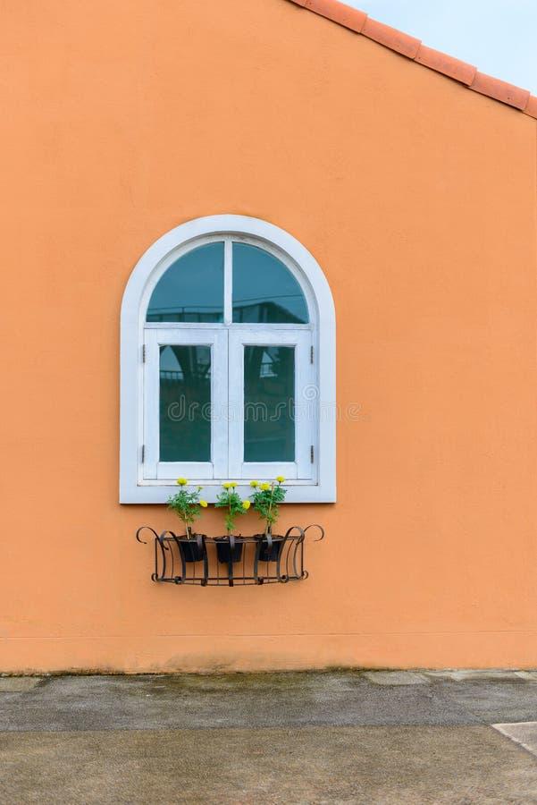 Εκλεκτής ποιότητας άσπρο παράθυρο στον πορτοκαλιούς τοίχο και Marigold το λουλούδι ι τσιμέντου στοκ εικόνες
