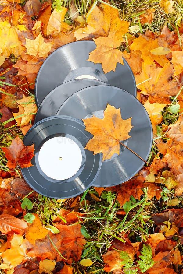 Εκλεκτής ποιότητας βινυλίου αρχεία στα φύλλα φθινοπώρου πτώσης στοκ φωτογραφία με δικαίωμα ελεύθερης χρήσης