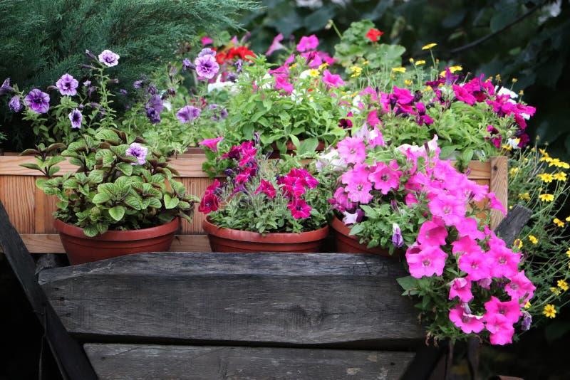 Εκλεκτής ποιότητας κάρρο με τα λουλούδια Διακόσμηση για την περιοχή στοκ εικόνα με δικαίωμα ελεύθερης χρήσης