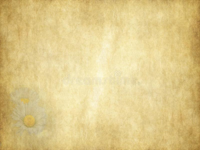Εκλεκτής ποιότητας κάρτα διακοπών μαργαριτών ομορφιάς σε παλαιό χαρτί ελεύθερη απεικόνιση δικαιώματος