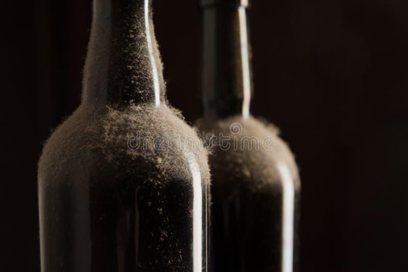 Εκλεκτής ποιότητας κρασί - σκονισμένα μπουκάλια στοκ φωτογραφίες με δικαίωμα ελεύθερης χρήσης