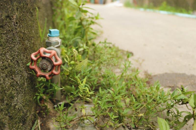 Εκλεκτής ποιότητας κόκκινο εξόγκωμα στροφίγγων νερού κήπων με την πράσινη χλόη από τον τοίχο - στην οδό στοκ φωτογραφία
