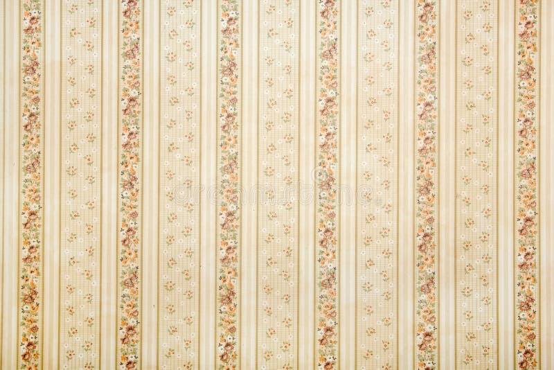 Εκλεκτής ποιότητας ριγωτή ταπετσαρία με το floral σχέδιο στοκ φωτογραφία με δικαίωμα ελεύθερης χρήσης