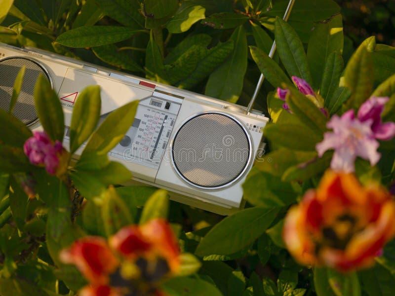 Εκλεκτής ποιότητας στερεοφωνικός φορέας κασετών στα λουλούδια στοκ εικόνες