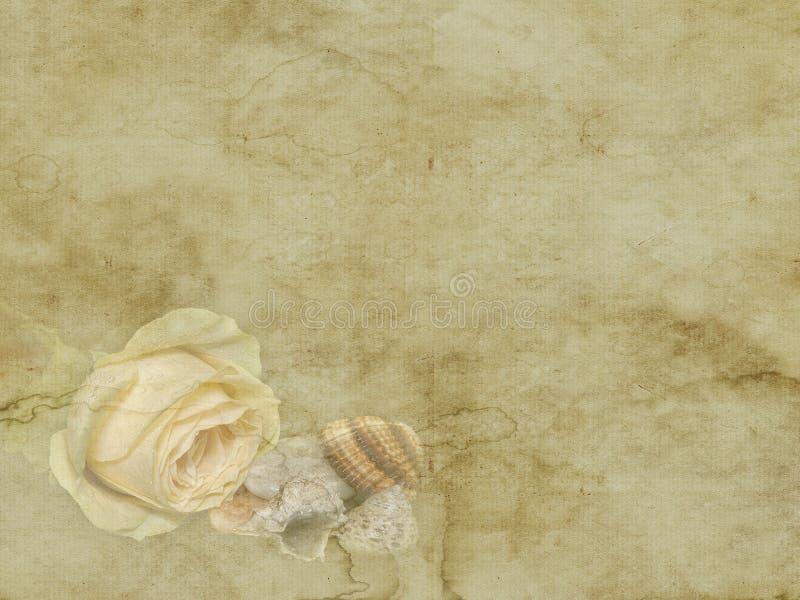 Εκλεκτής ποιότητας όμορφος κίτρινος αυξήθηκε με την κάρτα διακοπών κοχυλιών θάλασσας στο παλαιό υπόβαθρο εγγράφου στοκ φωτογραφία με δικαίωμα ελεύθερης χρήσης