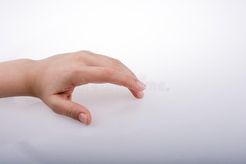 Εκμετάλλευση χεριών στοκ εικόνα
