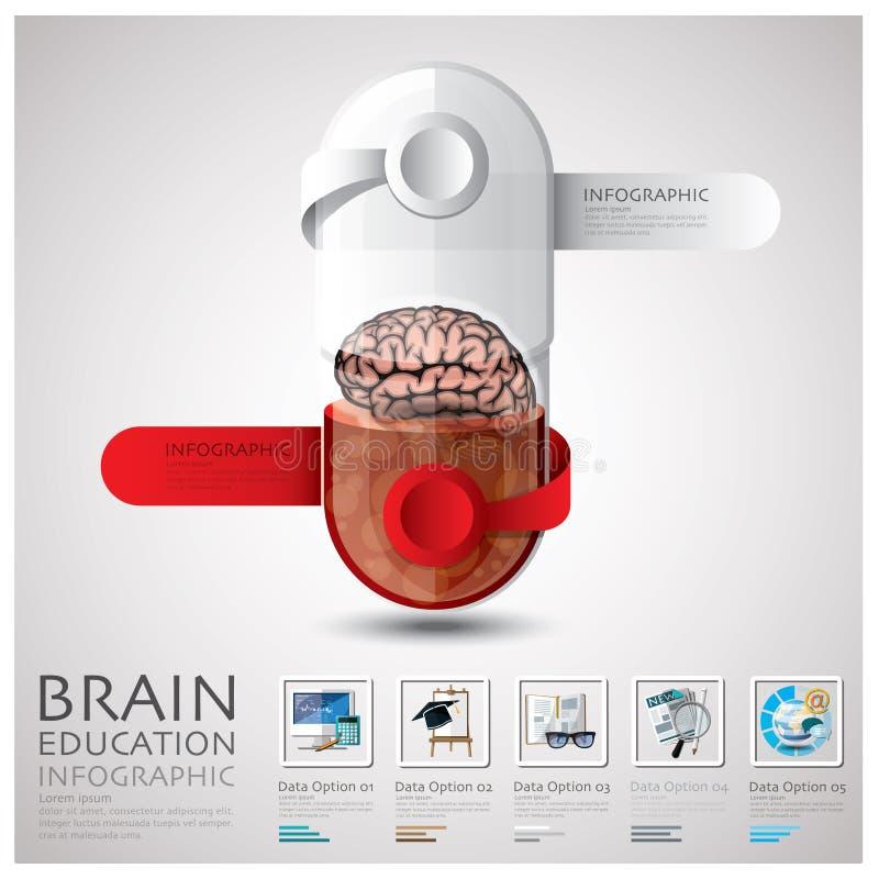 Εκπαίδευση και εκμάθηση Infographic εγκεφάλου καψών χαπιών ελεύθερη απεικόνιση δικαιώματος