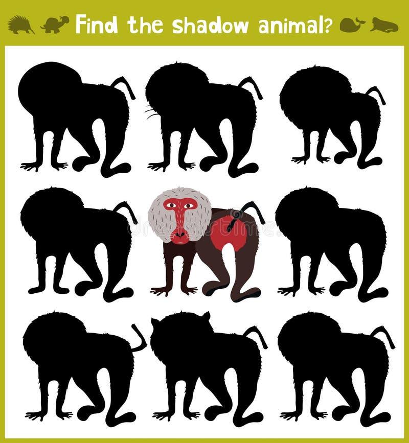 Εκπαιδευτικά παιχνίδια για τα παιδιά, κινούμενα σχέδια για τα παιδιά της προσχολικής ηλικίας Βρείτε τη σωστή σκιά για baboon από  διανυσματική απεικόνιση