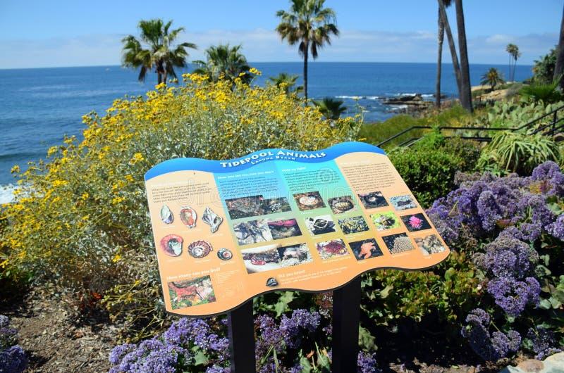 Εκπαιδευτική αφίσσα στο πάρκο Heisler στο Λαγκούνα Μπιτς, Καλιφόρνια στοκ φωτογραφίες με δικαίωμα ελεύθερης χρήσης