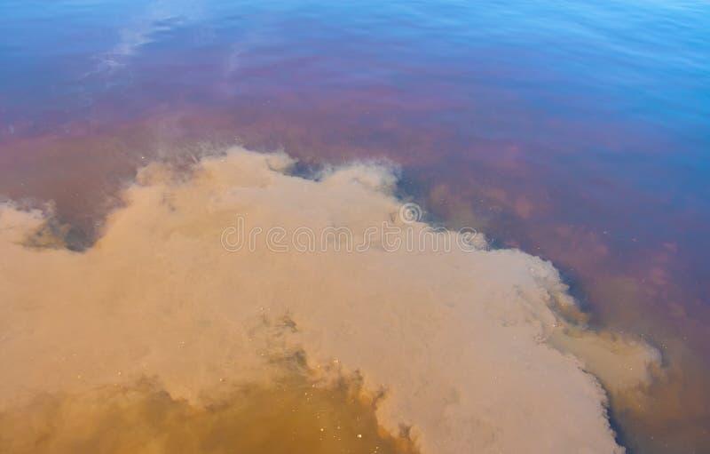 Εκπομπές του βρώμικου λασπώδους νερού στη λίμνη στοκ εικόνα