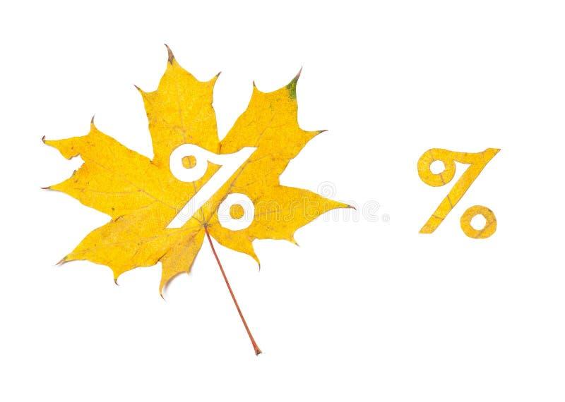 Εκπτώσεις φθινοπώρου Τα τοις εκατό υπογράφουν αποκόπτοντας στο φύλλο σφηνών στοκ φωτογραφίες με δικαίωμα ελεύθερης χρήσης