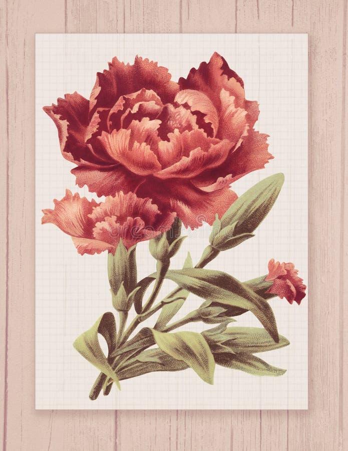 Εκτυπώσιμο εκλεκτής ποιότητας shabby κομψό λουλούδι ύφους στο ξύλινο κατασκευασμένο πλαίσιο υποβάθρου απεικόνιση αποθεμάτων