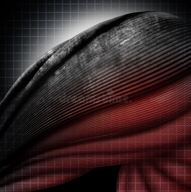 Εκφυλιστική ασθένεια μυών ελεύθερη απεικόνιση δικαιώματος