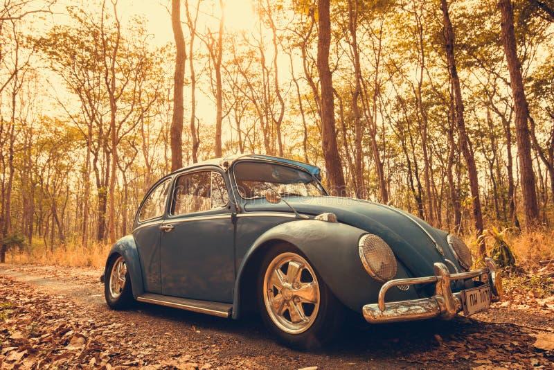 εκλεκτής ποιότητας αναδρομικό μπλε χρώμα του Volkswagen αυτοκινήτων στα δασικά φύλλα καφετιά στοκ εικόνα με δικαίωμα ελεύθερης χρήσης